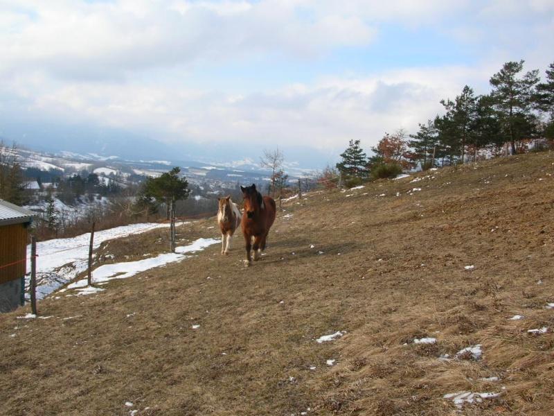 Voyage à cheval ... de plusieurs mois ... Dscn6113