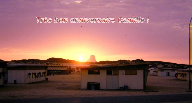 Bon anniversaire CAMILLE P2110010