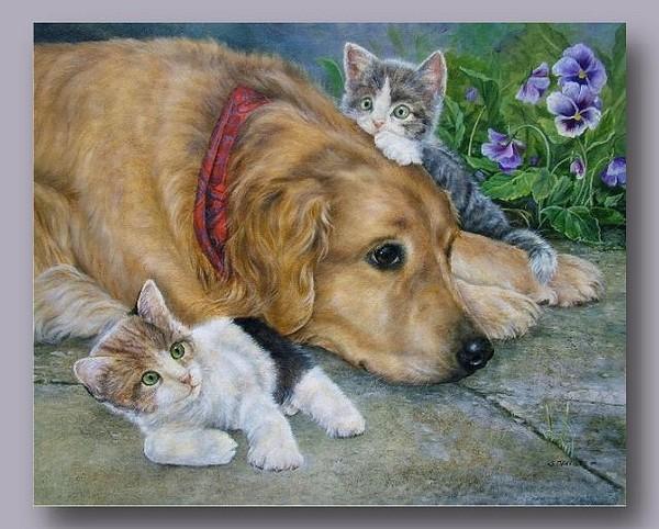 Belles images d'animaux 639d3610