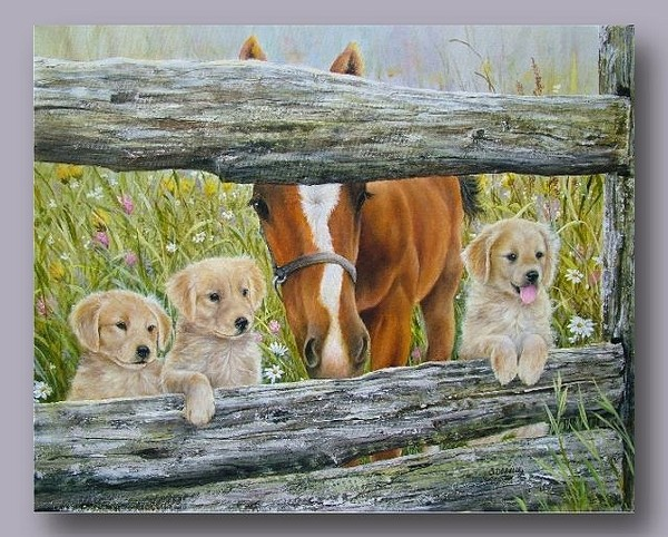Belles images d'animaux Bbb8e110