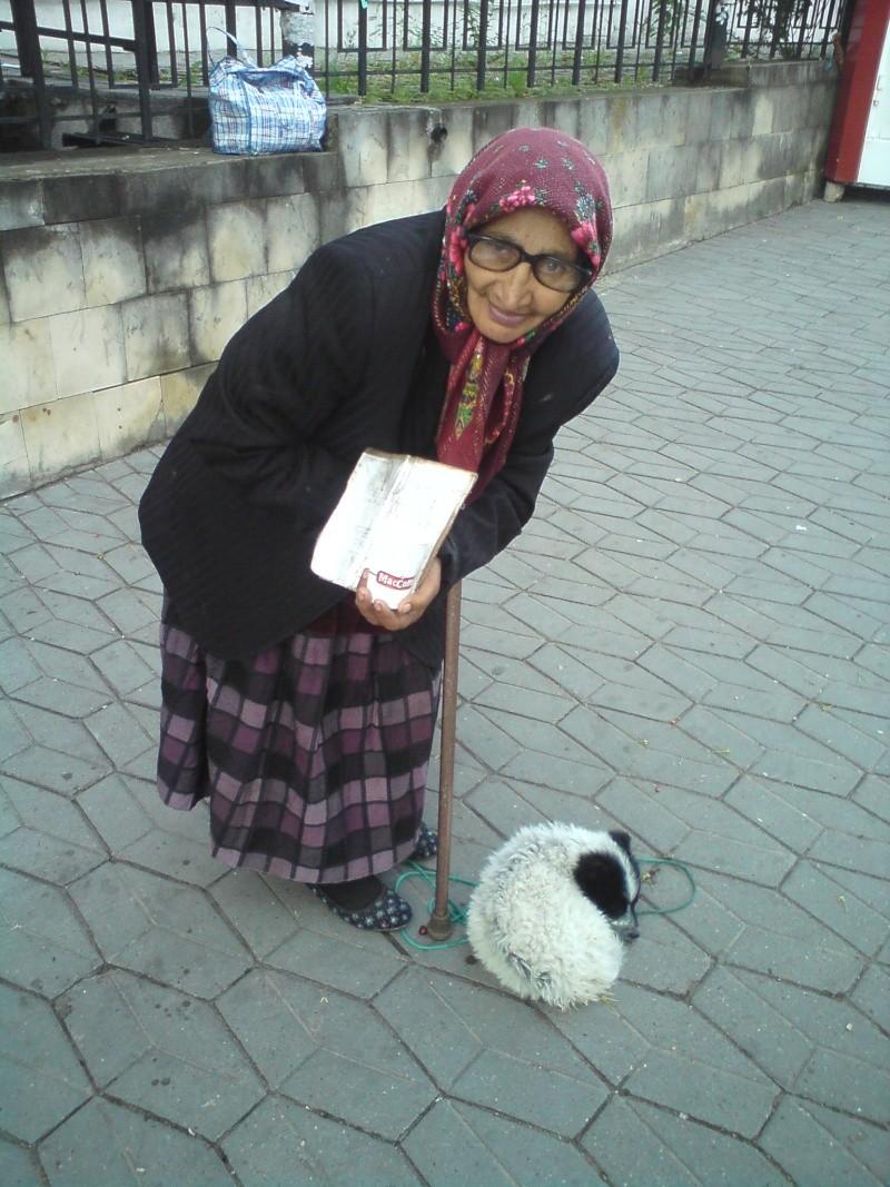 ... просит подаяние с собачкой... Dsc00024