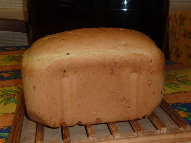 Nos pains du jour - Page 3 P1030411