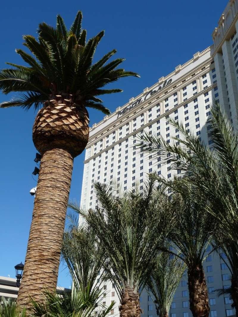 Viva Las Vegas: du 5 au 9 avril 2010 Las_ve91