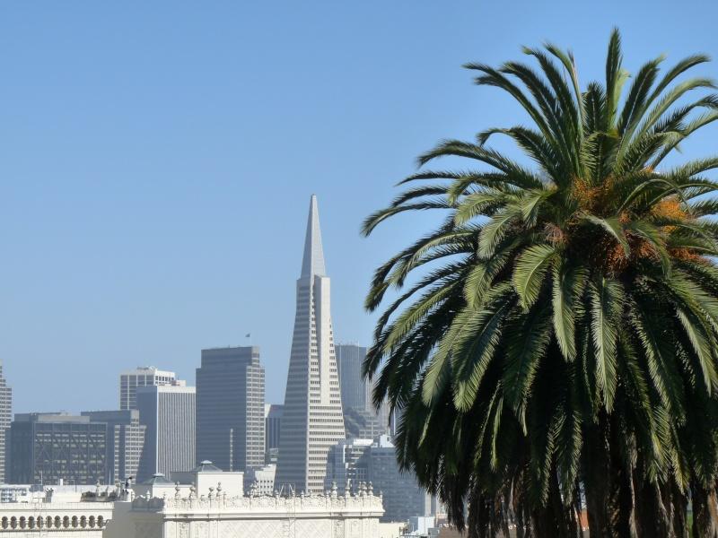Entre Mickey, LA et San Francisco P1090751