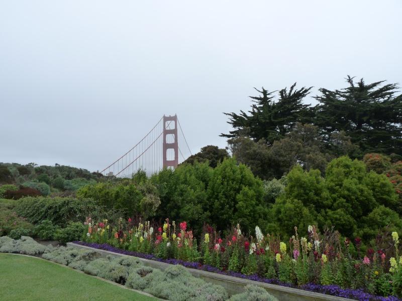 Entre Mickey, LA et San Francisco P1100018