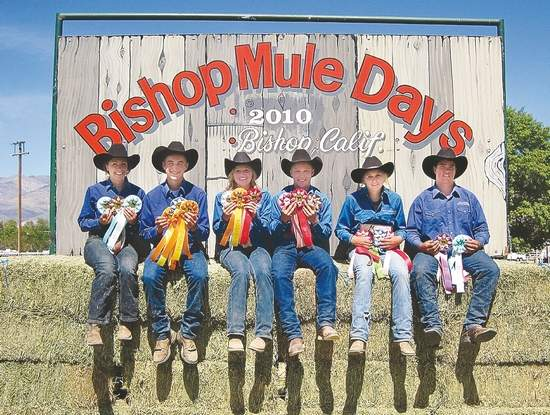 Bishop Mule Days - Californie Bilde10