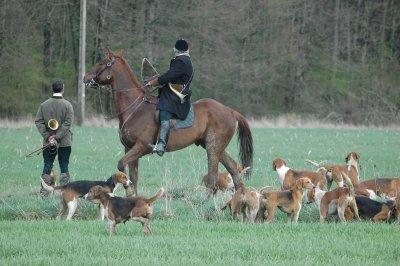 05 mars 2011 : Manif. contre la chasse à courre : Cissé (86) Cheval10