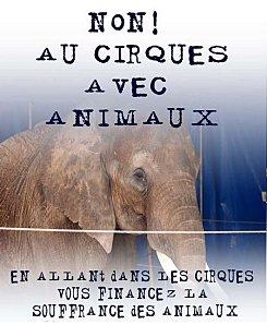 Manif. contre le cirque Pinder, les 18 & 21 Dec. à Paris Cirque12