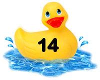 Closed - Pick-a-Duck  Rubber23