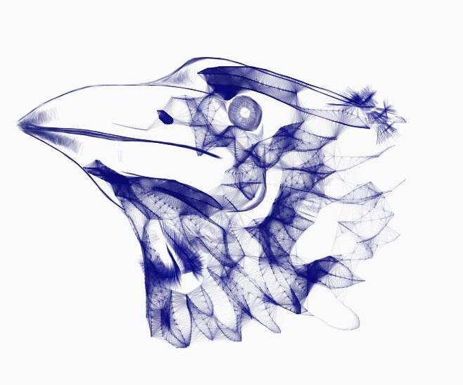 programme sympa => galerie collective Bird2_10