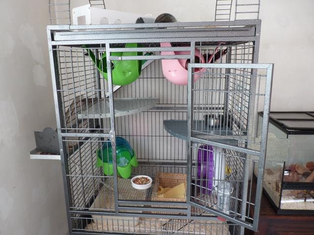 A vendre 2 cages (06, 83..) P1000413