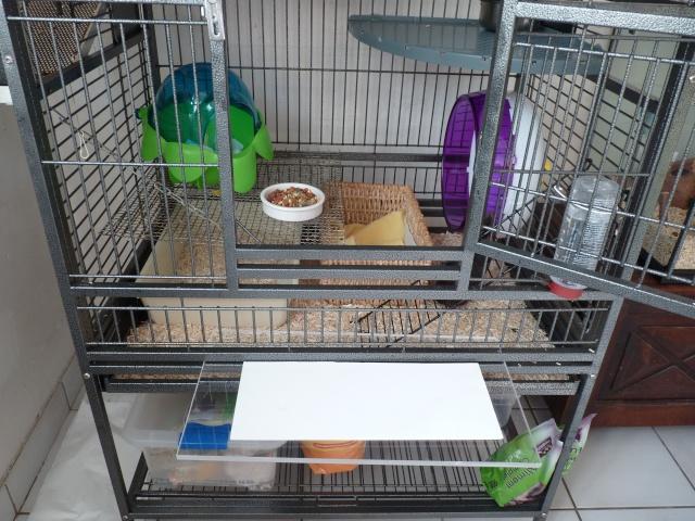 A vendre 2 cages (06, 83..) P1000414