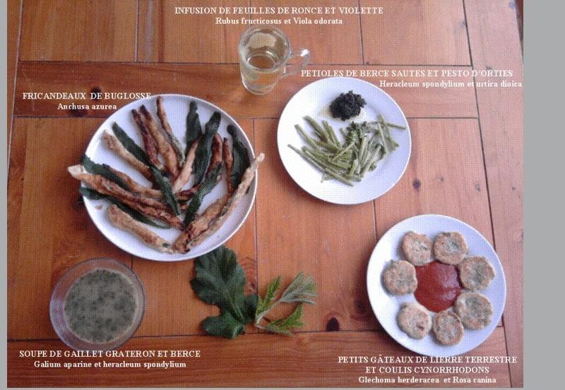 En novembre, une récolte et un repas complet ! Compos11