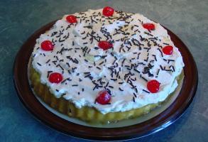 Shortcake aux kiwis d'Angélina Kiwi_b10