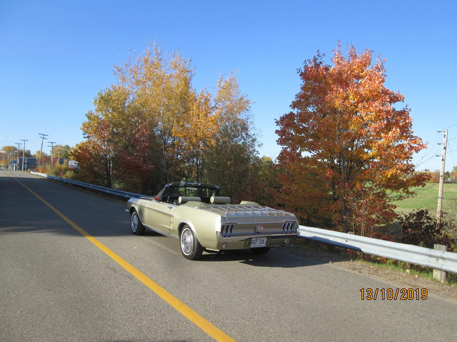 Vos photos d'automne  04310