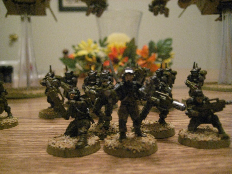 Elysian Project Log (IG Air Cavalry Army) Img_2615