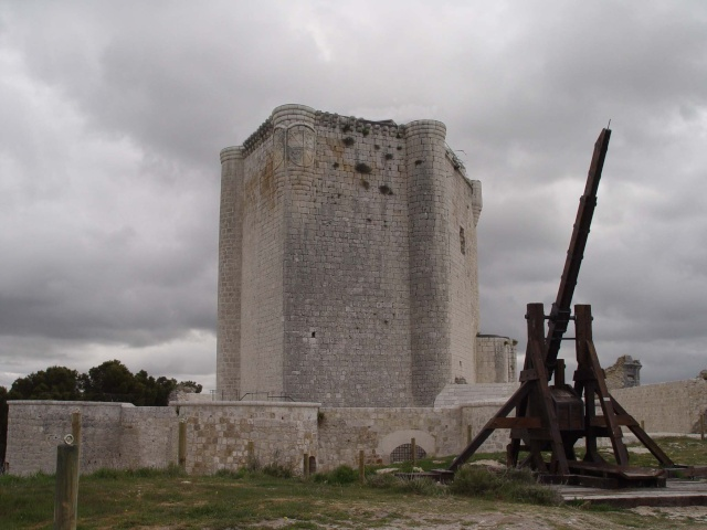 ISCAR 2010 El Maestro el aprendiz y el Asedio al Castillo. 21746310