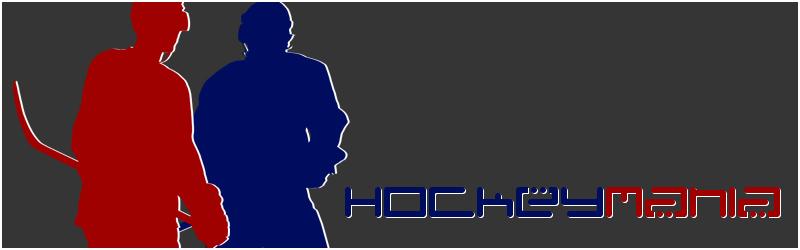 Facebook hockey league