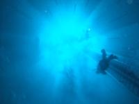 NEMO 33 - Sunday 7th March Nemo2_40