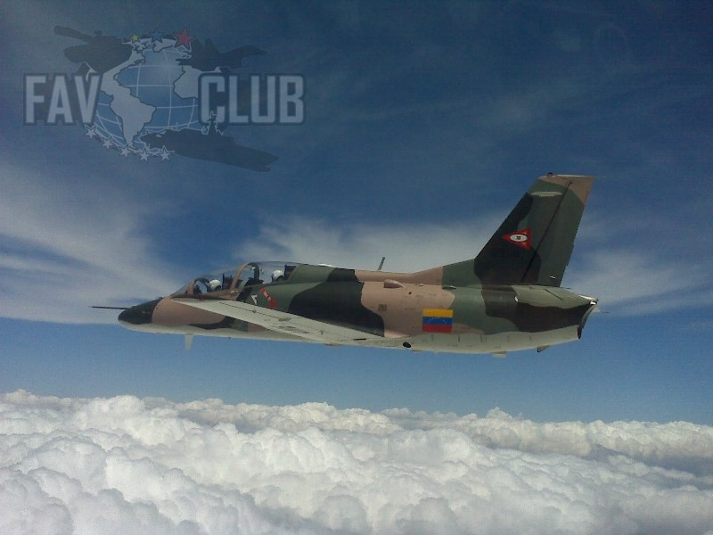 Armée Venezuelienne/National Bolivarian Armed Forces/ Fuerza Armada Nacional Bolivariana - Page 4 K8wfc410