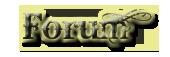 Site design comp. Forum10