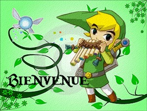 Sortie des mangas Zelda : Oracle of Ages et Seasons Popup_10