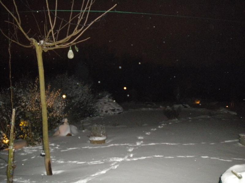 Votre photo pour Février 2010 - Page 2 Dscn0013