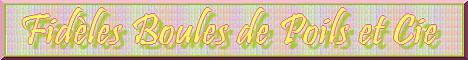 Fidèles Boules de Poils et Cie - Page 2 Mini_b34