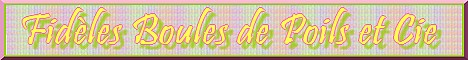 Recherche d'1 admin et d'1 modo pour Fidèles Boules de Poils et Cie Mini_b36