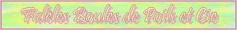 Fidèles Boules de Poils et Cie - Page 2 Mini_b48