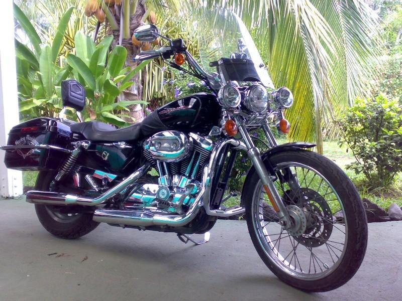 combien sommes nous en 1200 Sportster sur Passion-Harley - Page 3 Motohd10