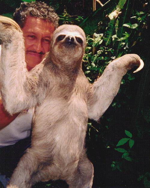 Hurricane of the Elderly and other strange magics Sloth-10