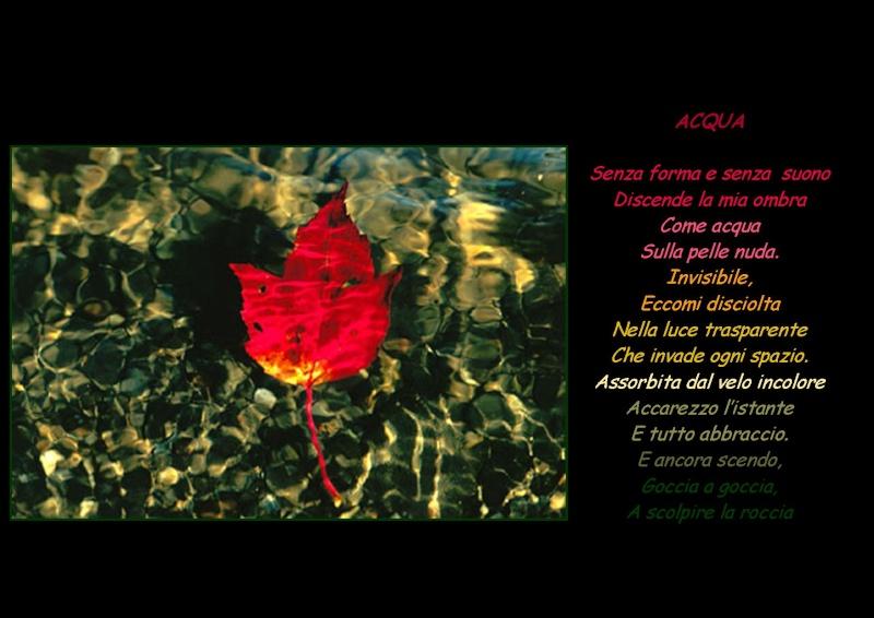 Acqua, fonte di Vita Acqua10