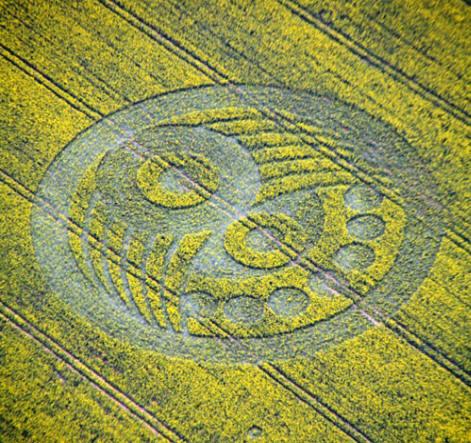 I primi crop circles Old-sa10