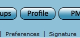 Your Profile - Information Profil10