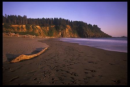 Playas de la Reserva  La_pus11