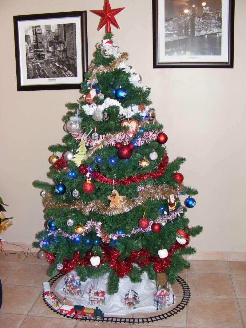 Vos décorations de Noël  - Page 5 Dscf6212