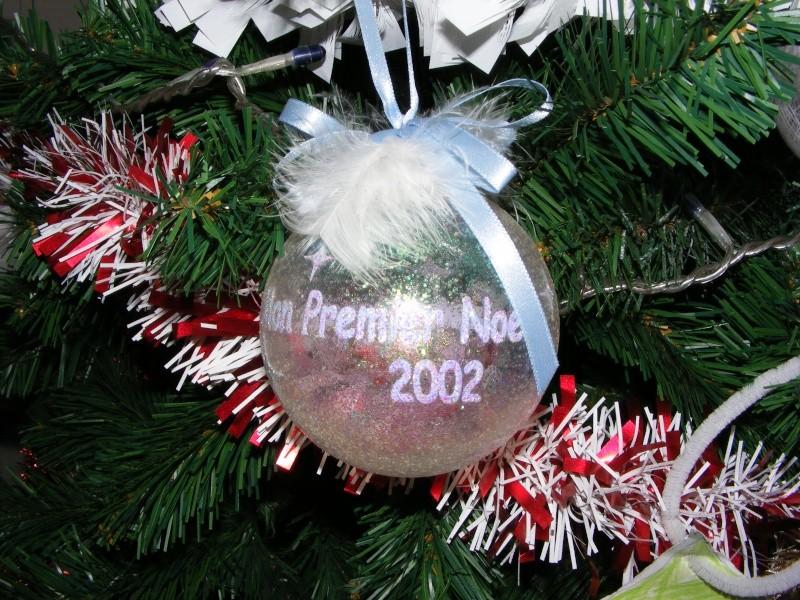 Vos décorations de Noël  - Page 5 Dscf6213