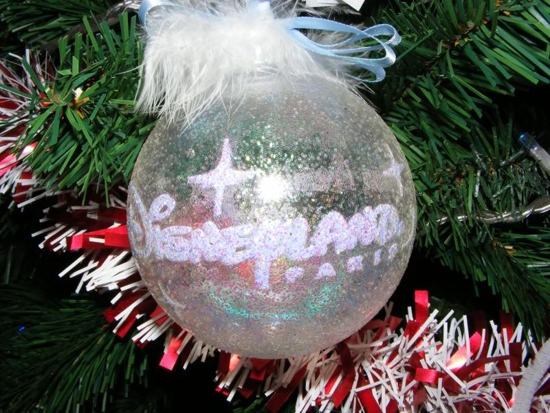 Vos décorations de Noël  - Page 5 Dscf6214