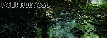 La Forêt de l'Aube RPG Petit_10