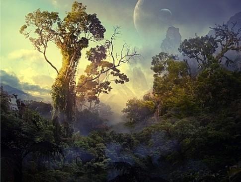 Avatar : Reprenons la Terre ! Pandor10
