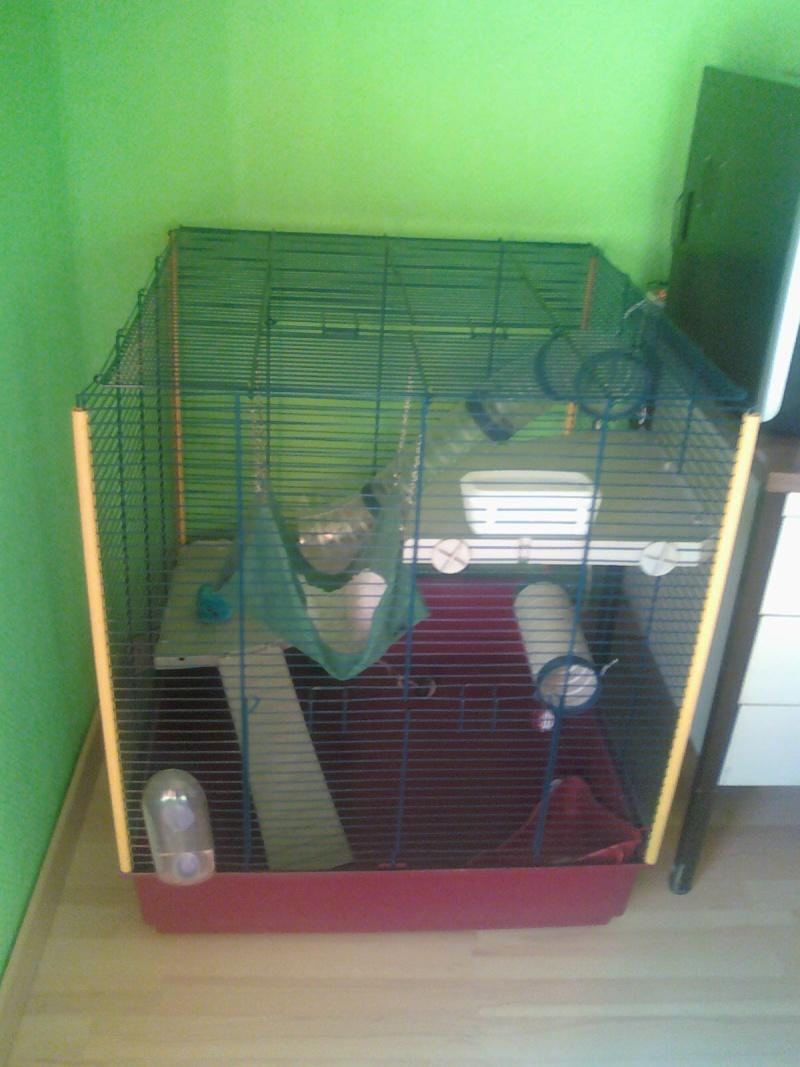 la cage de mon futur furet 10021510