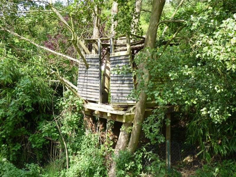 5ème envoi la vieille cabane + ... P1000310