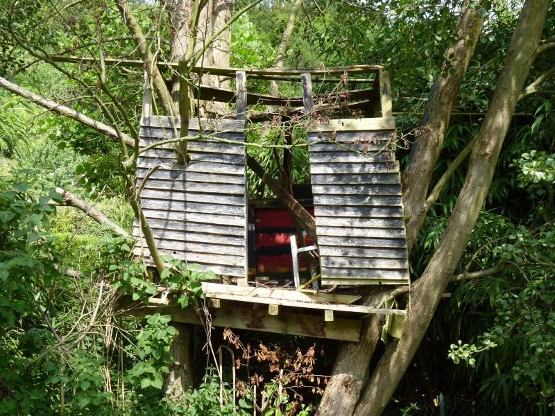 5ème envoi la vieille cabane + ... P1000311