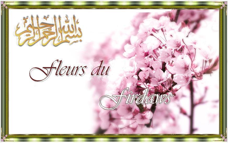 Fleurs du Firdaws
