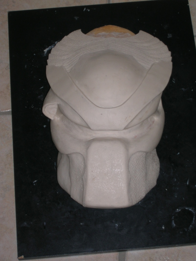 casque predator d'un newbees Dscn4620