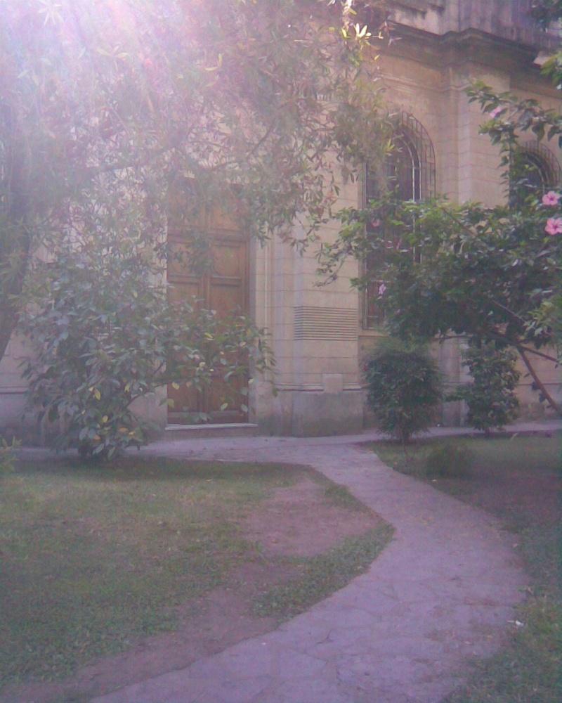 Colegio nuestra señora de la misericordia Imagen14