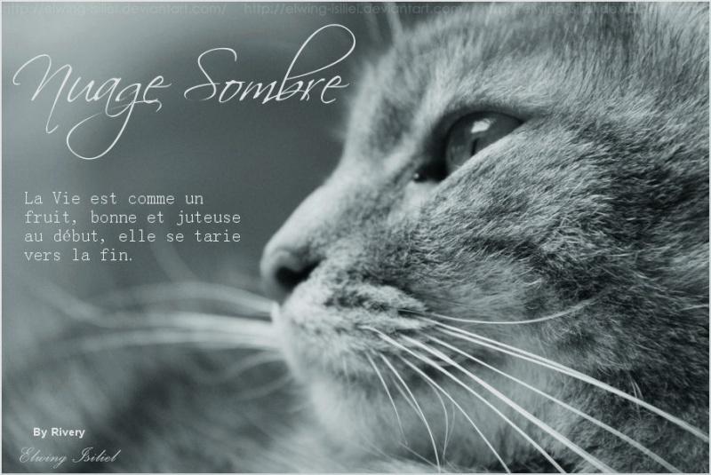 Petite Rivière --> Nuage Sombre [NON REUSSI] The_dr10