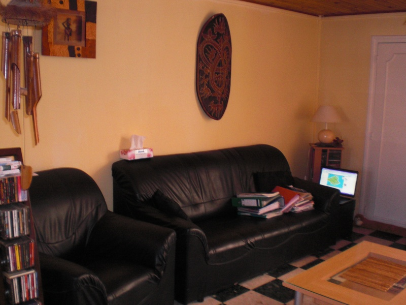 Besoin d'aide pour un Relooking Salon type Africain Cimg1418
