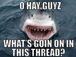 Funny Pic Thread 12631912